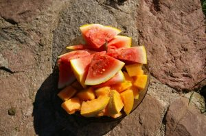 lietuviski-arbuzai-melionai-labanoris-farm