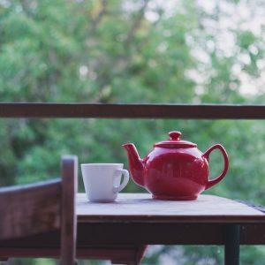 Gudobeles arbata – lapai ir žiedai